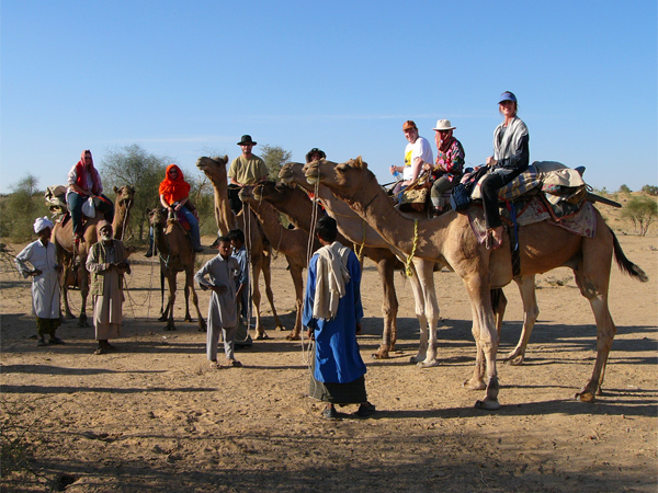 Tours-to-India-Jaisalmer-camels